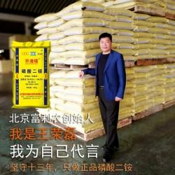 厂家供应畅销品牌 磷酸二铵北京富利农