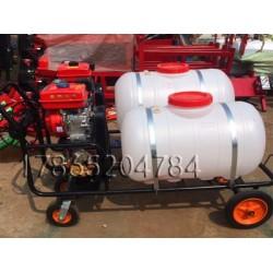 手推式打药机 农用果园喷雾器 种植蔬菜打药机 厂家直销 新款背负式农用电动喷雾器12v电动充电打药机农药