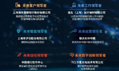 IDC:卓越奖揭晓!北汽集团、浦发银行、联合利华等9大组织荣膺大奖